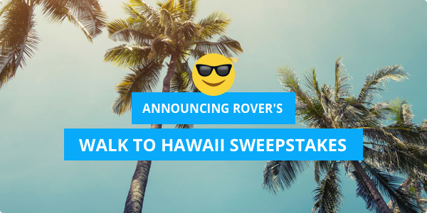 600x300_rover_hawaii_sweeps