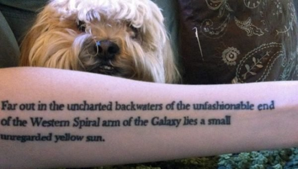 9 Dogs Not Afraid to Let Their Geek Flag Fly