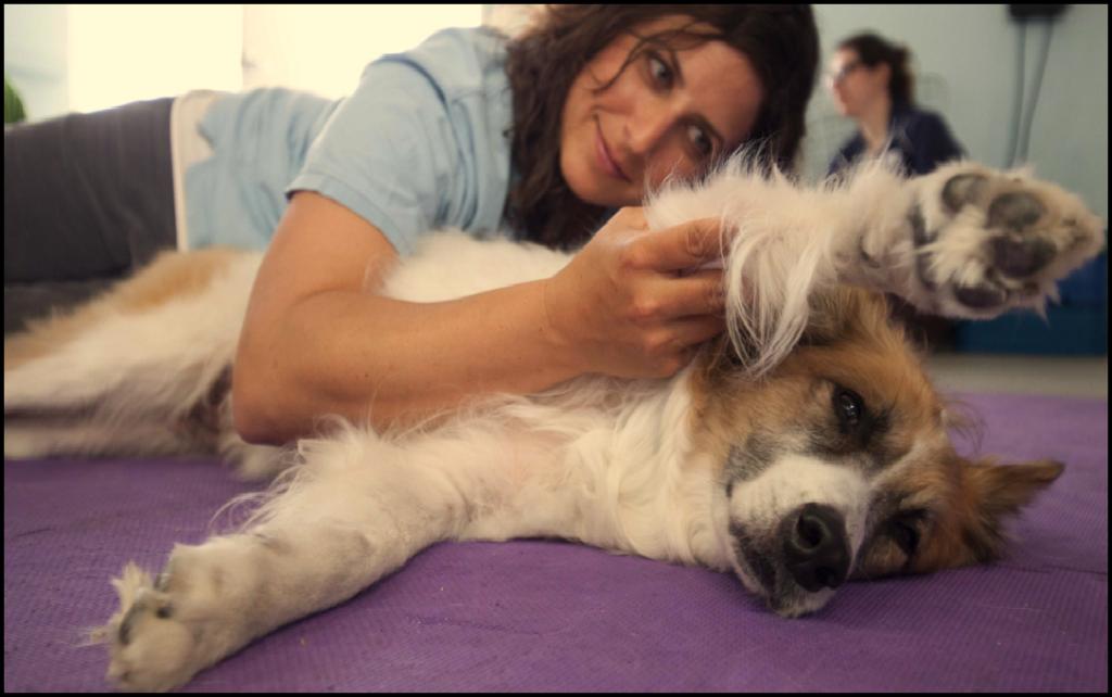 vet jessica waldman and dog
