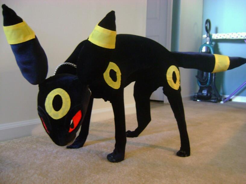 real_life_umbreon_by_leafeon_ex-d4ggo09