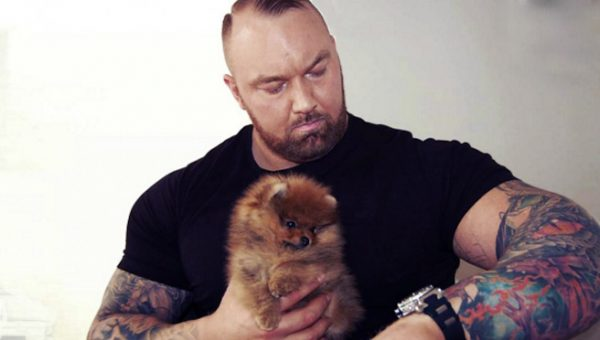Game of Thrones' The Mountain Has a Pomeranian Puppy Named Asterix and He's Amazing.
