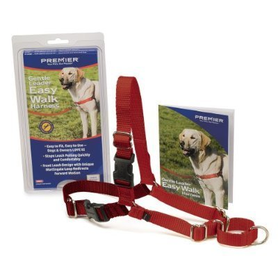 A Guide to Buying the Best Dog Leash