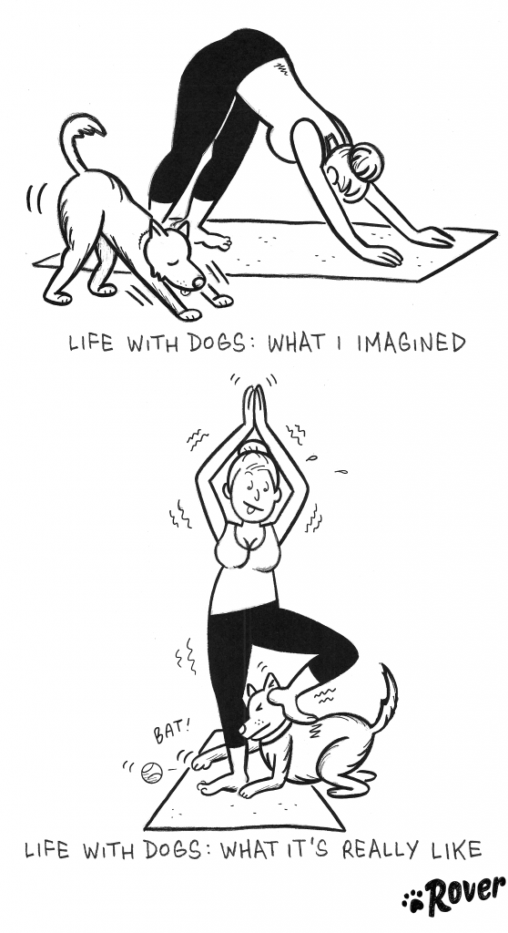 comics that show what it's really like to own a dog