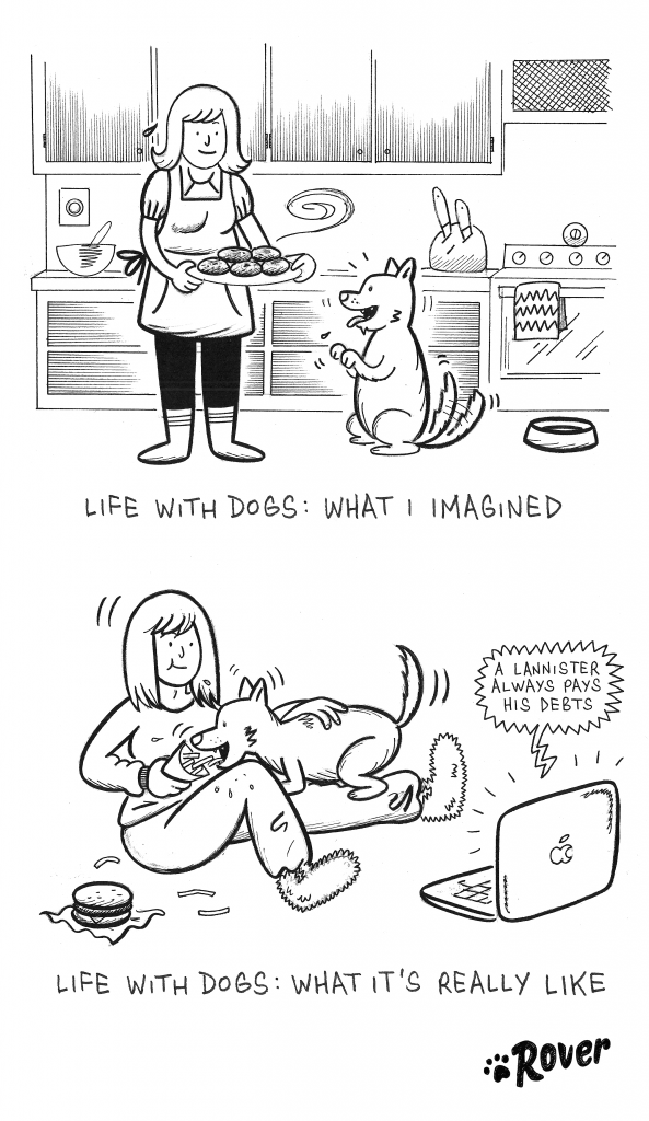 The Real Life Of A Dog Parent Revealed In Hilarious Comics - 18 hilarious comics that are all too true for cat owners