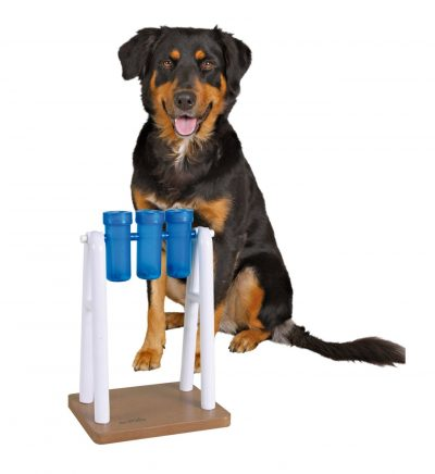 mad-scientist-dog-puzzle-toy
