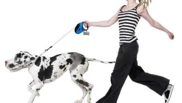 retractable-dog-leash