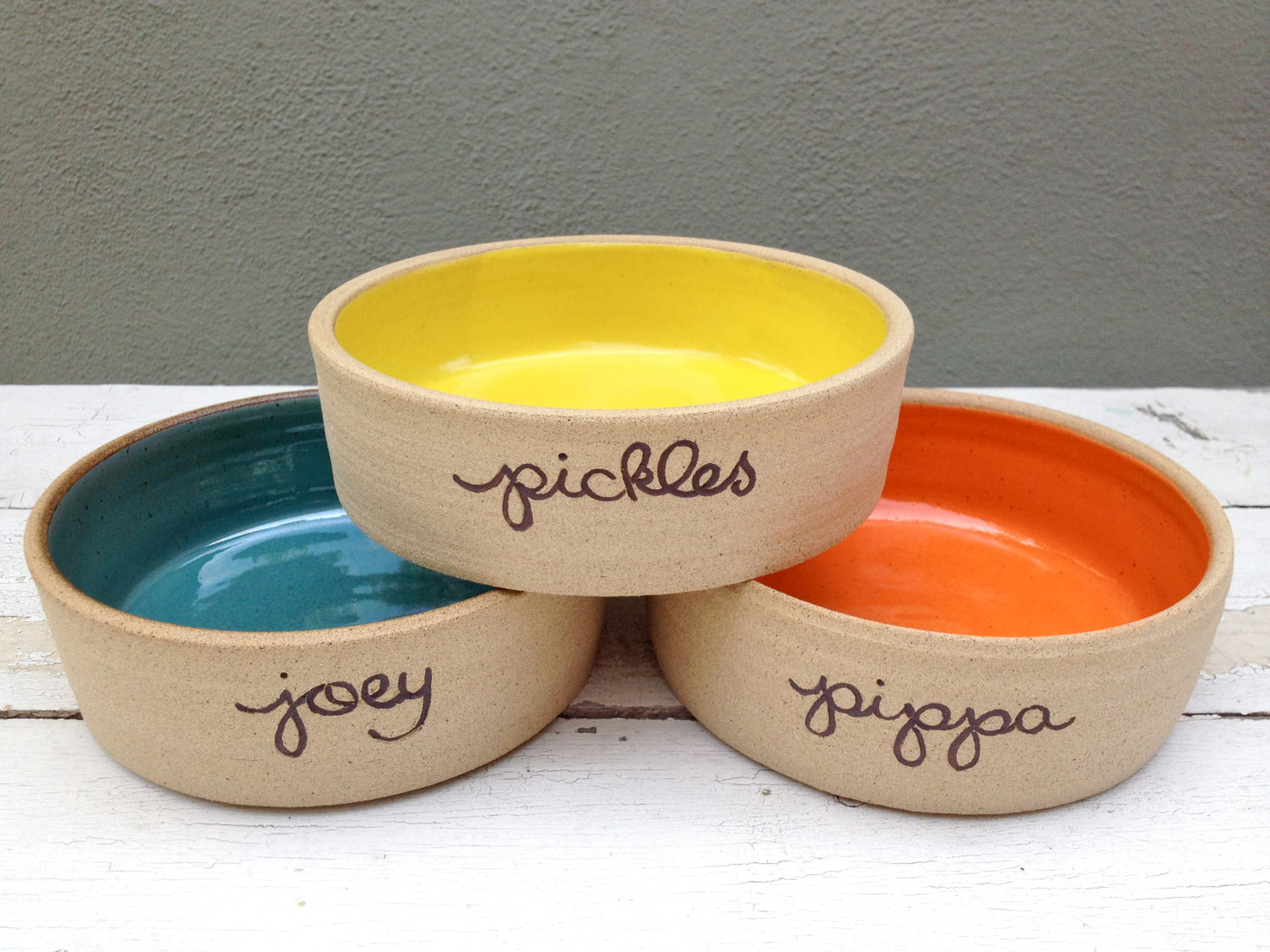 cool dog accessories dog bowls etsy