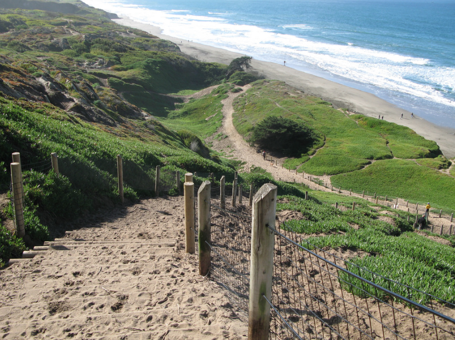 "Fort Funston is known to locals as ""Doggy Disneyland,"" and it's easy to see why! Photo courtesy of Flickr."