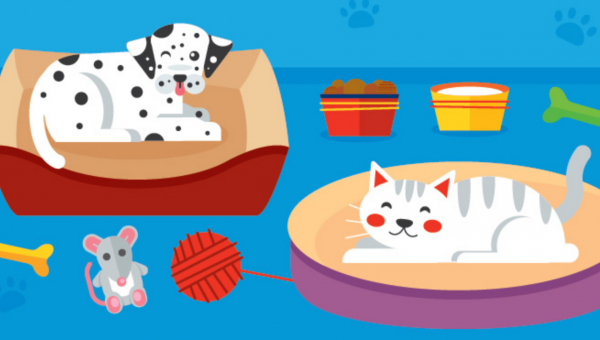 Keep or Toss? The Lifecycle of Your Pet's Beds, Bowls, Crates, and Toys [Infographic]