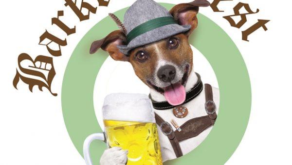 7 Best Dog Events in Washington, D.C.