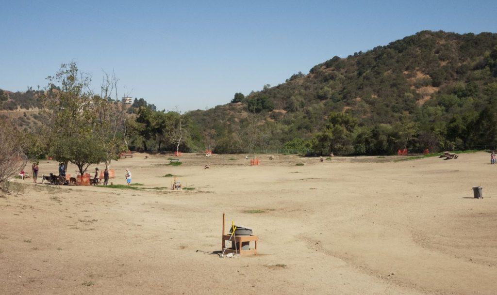 There are large, fenced-in play areas for both large and small dogs at Laurel Canyon. Photo via LosDogs.com.