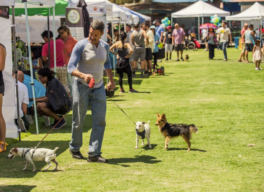 pawsapalooza dog events in los angeles