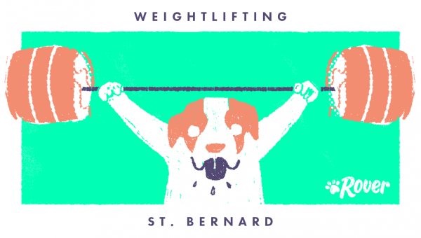 If Dogs Were Olympic Athletes, They'd Win Gold. Here's Why. [Illustration]