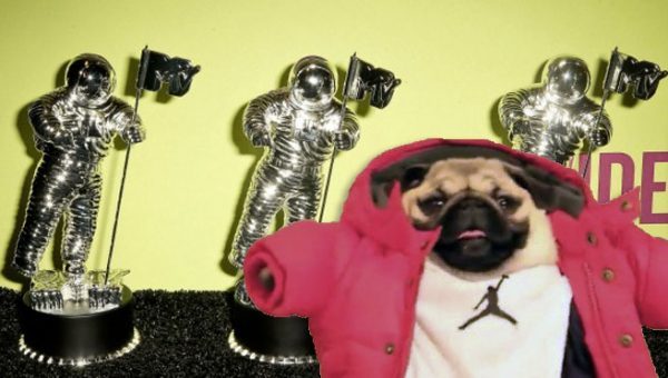 Dog Vines Based on VMA Video of the Year Contenders are the Best/Worst Thing You'll See All Day