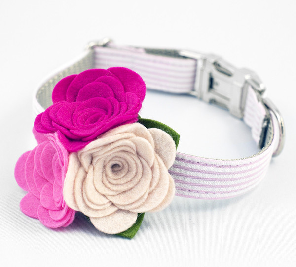 summer fashion trends for dogs floral collar