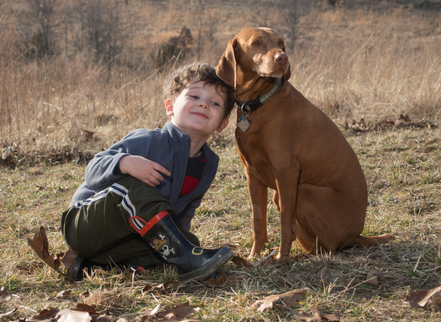 When it comes to raising a dog vs. a child, there are many similarities. Photo via Flickr.