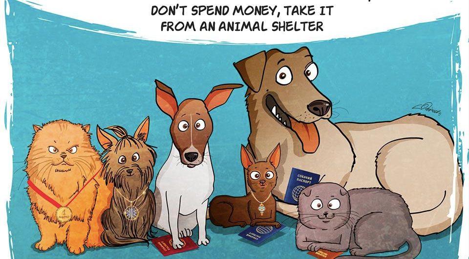 bird born illustrator russian cartoonist dog adoption rescue story