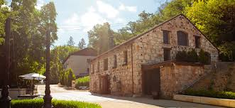 Gorgeous, historical winery just 5 minutes from Sonoma Plaza. Dogs allowed in tasting room and outdoor picnic area. Photo via Buena Vista Winery.