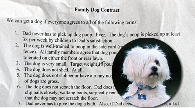 reluctant dad dog family contract