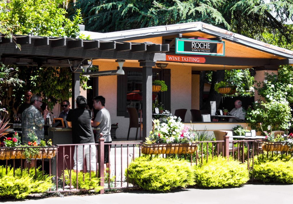 The dog-friendly Roche Winery is a must-visit near the Sonoma Plaza. Photo via Wine Explorers.