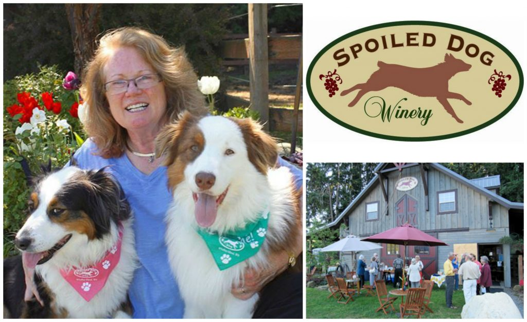 Photos via Spoiled Dog Winery.
