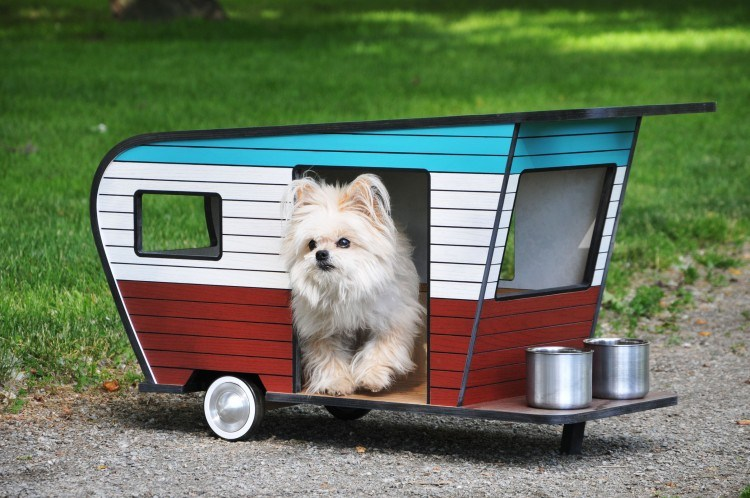 8 Dogs Getting In On The Tiny Houses Trend Rovercom