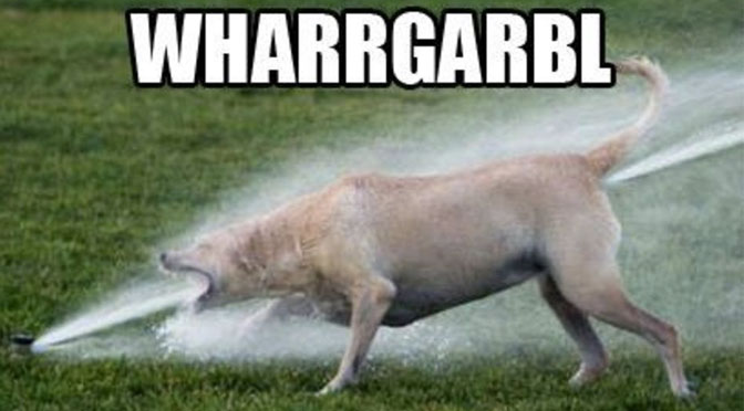 wharrgarbl dogs vs sprinklers