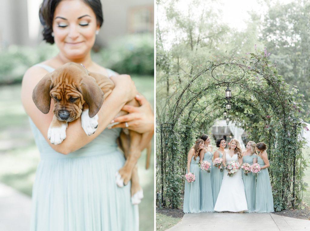 bride rescue puppies wedding photos