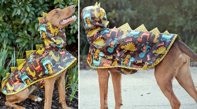 dinosaur-dog-raincoat