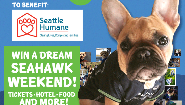 Dress Up Your Dog to Win a Dream Seahawks Weekend