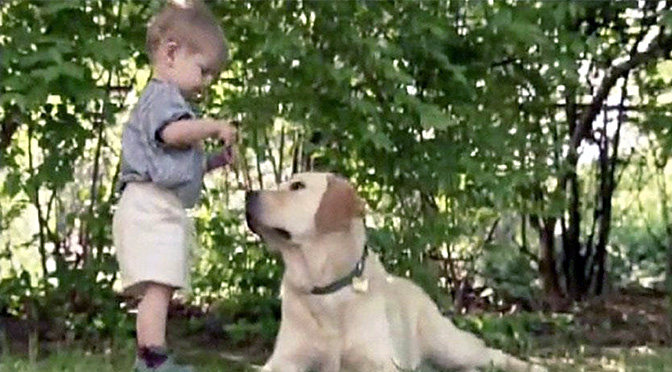 joshua-and-toby-dog-and-boy-best-friends
