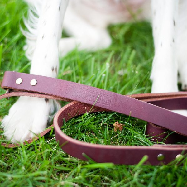 Timber and Tide training leash