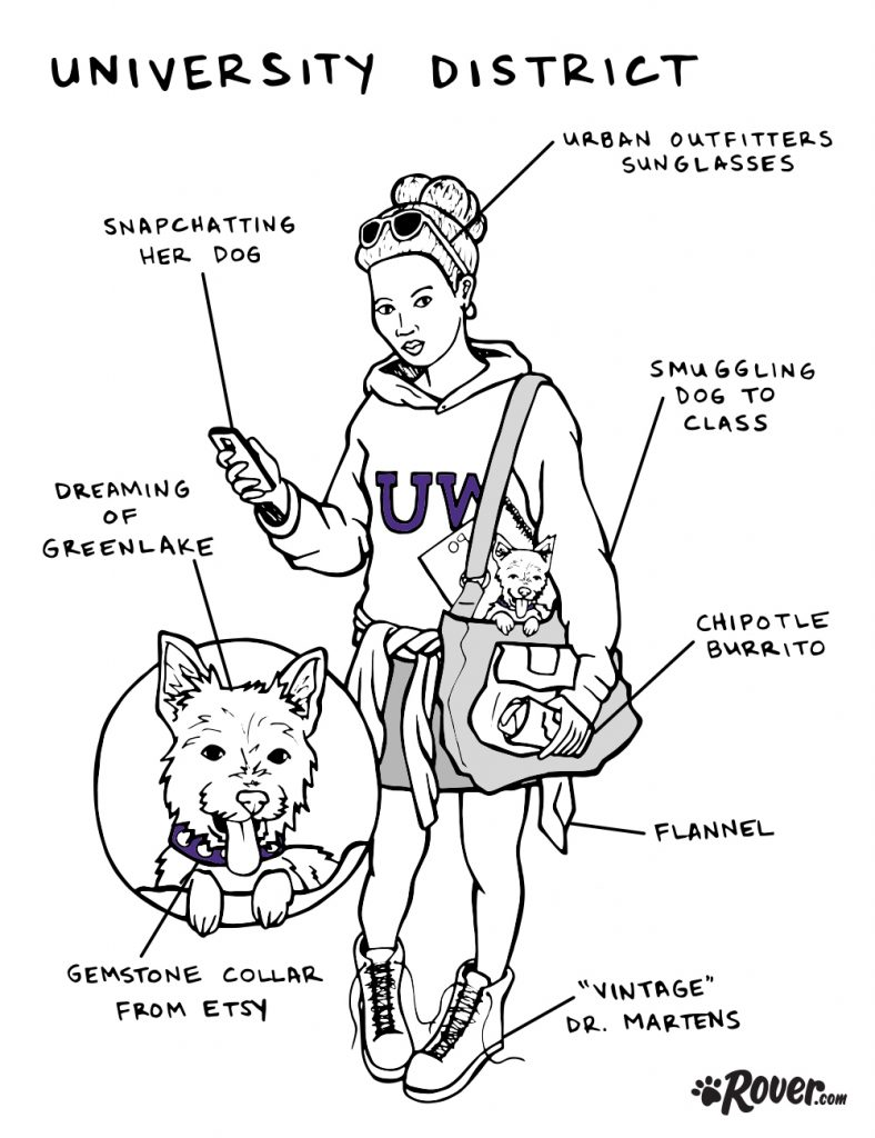 university district rover dog owners