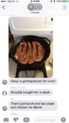 bacon-for-daisy