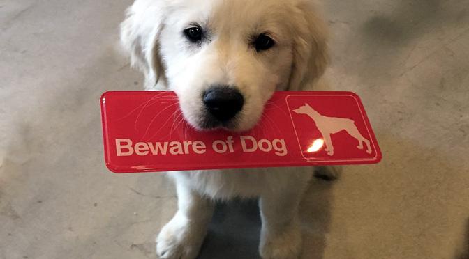 beware-of-me