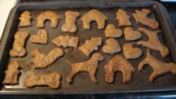 dog treat kitchen peanut butter dog biscuit