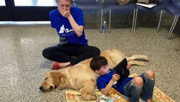 The Moment a Dog Changes an Autistic Boy's Life Forever