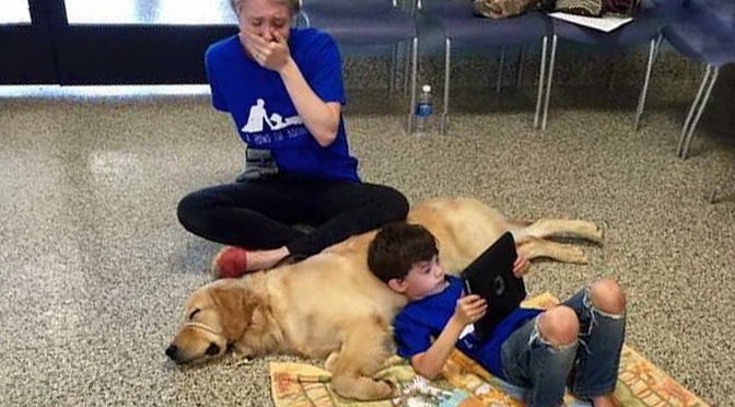 The Moment A Dog Changes An Autistic Boy S Life Forever
