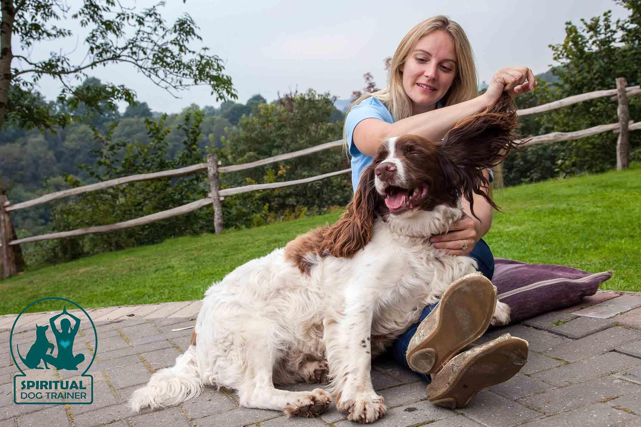 spiritual-dog-trainer-canine-flow-dog-retreat