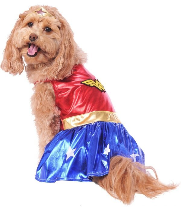 Wonder Woman last-minute costume for dogs