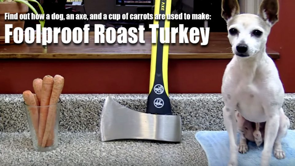 fool-proof-roast-turkey-dog-rube-goldberg-machine