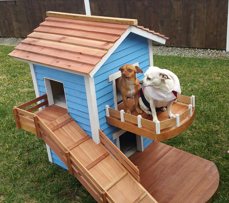 6 swanky doghouses you39ve gotta see to believe the dog for 2 dog dog houses