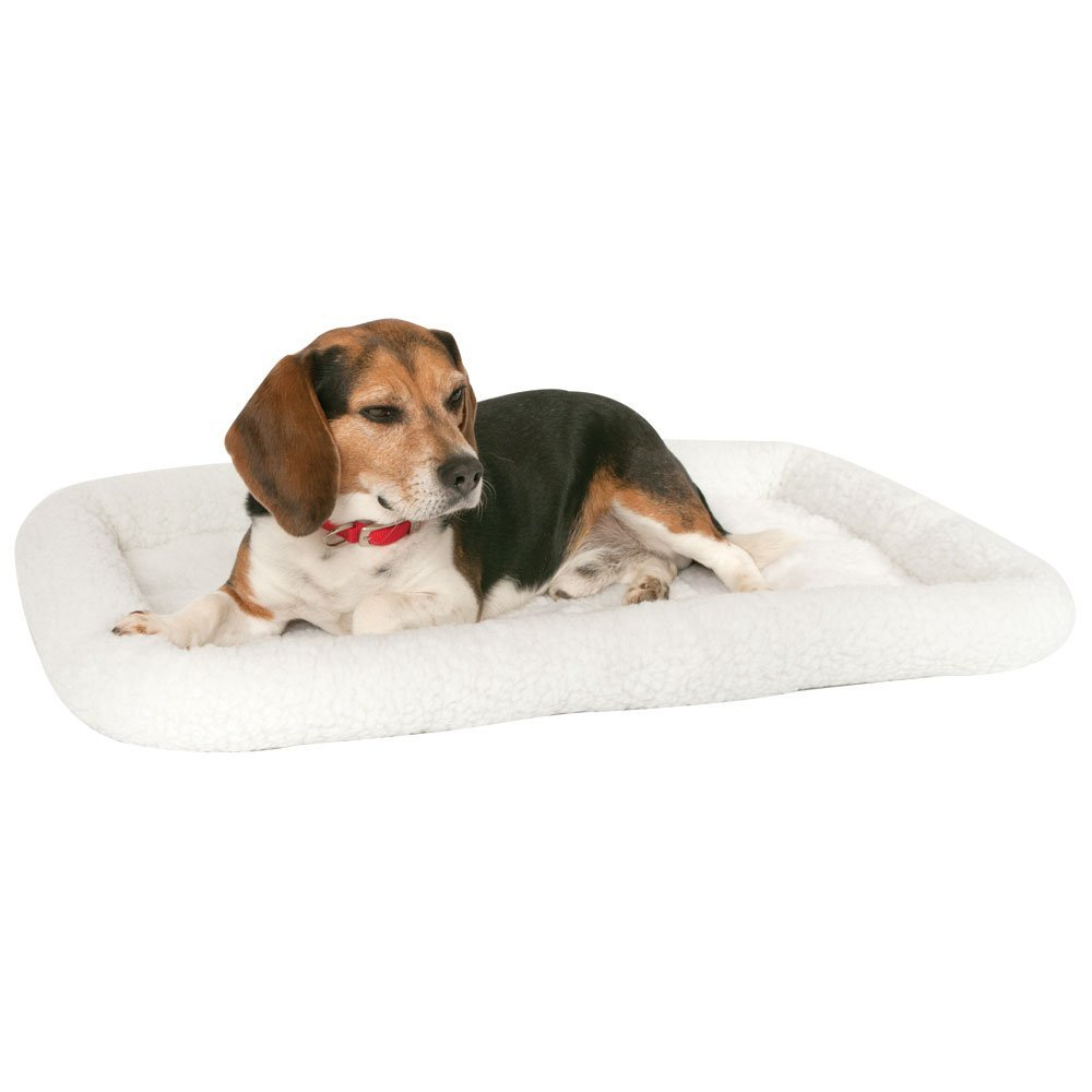 16 Cyber Monday Pet Deals The Dog People By Rover Com