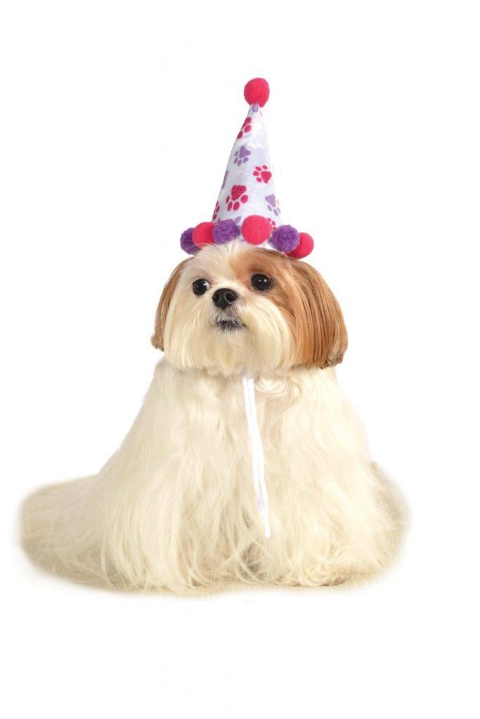 monday-birthday-hat