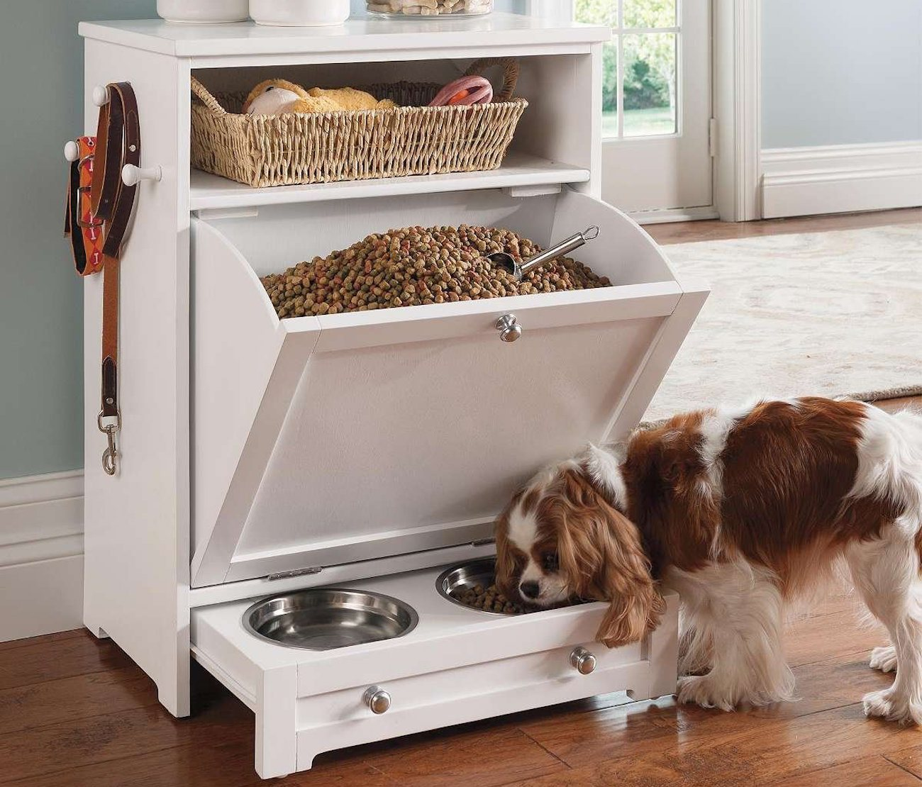 Declutter Your Dog with 9 Inspiring Ideas for Organizing ...