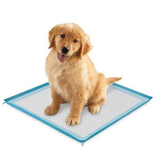 puppy-pee-pad