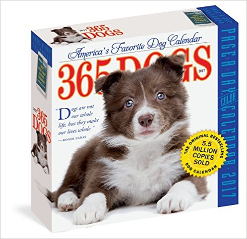 daily dog calendar stocking stuffer