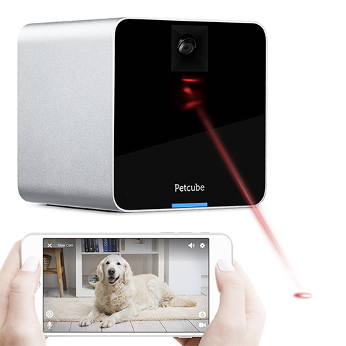 petcube-video-camera