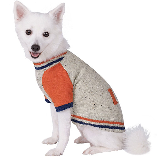 baseball-jacket-dog-sweater