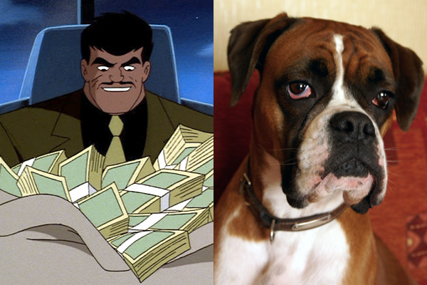 bruno-mannheim-boxer-batman-dog-names